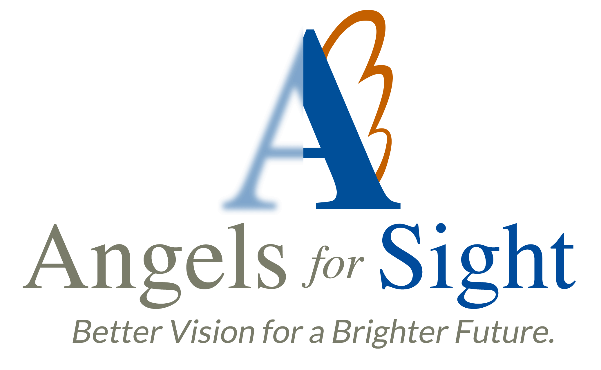 Client Profile: Angels for Sight